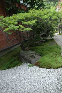 匠心庵の庭